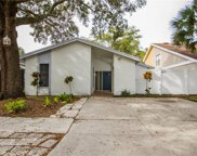 10512 Weeping Willow Place, Tampa image