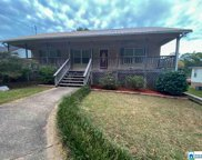 281 Kings Cir, Pell City image
