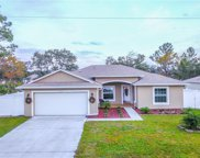 33 Willow Lane, Poinciana image