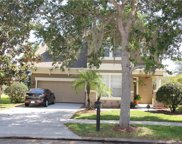 6803 Thornhill Circle, Windermere image