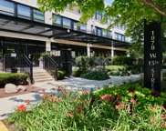 1070 West 15Th Street Unit 306, Chicago image