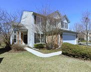 29720 Butterfly Court, Lake Bluff image