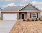 381 Springs Crossing Dr, Columbiana image