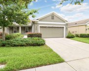 16026 Starling Crossing Drive, Lithia image