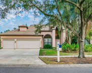 4212 Thistle Terrace Place, Valrico image