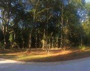 12 Vintage Oaks Way, Simpsonville image