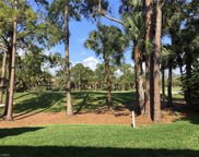 54 Cypress View Dr, Naples image