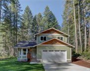 10514 Olympic Place, Anderson Island image