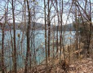 Lot 197 Lakeview Drive, Sharps Chapel image