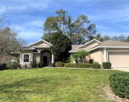 2129 Wolf Ridge Lane, Mount Dora image