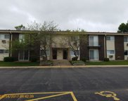 8860 North Western Avenue Unit 2G, Des Plaines image