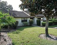 2900 Silver Bell Court, Palm Harbor image
