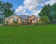 6104 Wild Orchid Drive, Lithia image