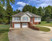 15 Shelby Dr, Hayden image