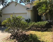 9033 Egret Cove Circle, Riverview image