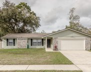 11072 BUGGY WHIP DR, Jacksonville image