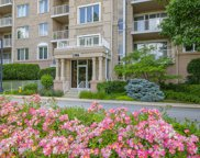 1705 Pavilion Way Unit 307, Park Ridge image