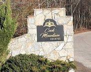 LT 11 Cook Mountain Estate, Blairsville image