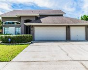 12026 Steppingstone Boulevard, Tampa image