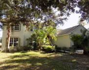 310 Savannah Oaks Place, Seffner image