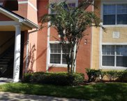 10861 Windsor Walk Drive Unit 7102, Orlando image