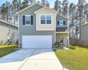 353 Iveson Road, Summerville image