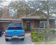 3803 Red Ash Court, Kissimmee image