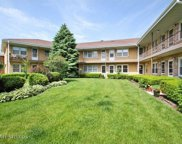 5916 North Odell Avenue Unit 5BB, Chicago image