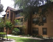 958 Salt Pond Place Unit 203, Altamonte Springs image