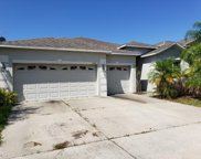 13507 Freemark Briar Place, Riverview image