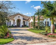 16912 Fairgrove Way, Naples image