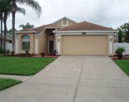 3186 Bentley Drive, Palm Harbor image