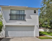 9420 Citrus Glen Place, Tampa image