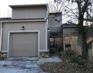 4258 Indian Pipe  Trace, Indianapolis image