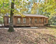 11018 Painted Tree  Road, Charlotte image
