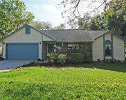 2452 Carol Woods Way, Apopka image