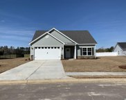 232 Maiden's Choice Dr., Conway image
