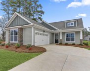 215 Bowyer Court, Chapin image
