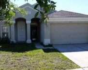 25317 Lexington Oaks Boulevard, Wesley Chapel image