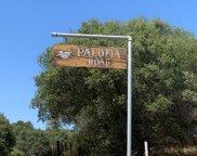 46333 Paloma, Coarsegold image
