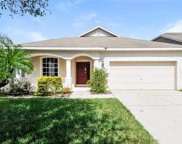 11705 Summer Springs Drive, Riverview image
