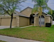 8306 Carriage Pointe Drive, Gibsonton image