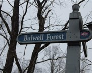 208 Bulwell Forest, James City Co Middle image