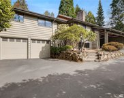 13214 35th (private drive/not busy) Ave NE, Seattle image