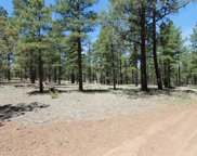 9715 Forest Service Rd 713, Parks image