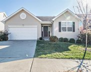 11228 Tea Olive, Bridgeton image