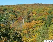lot #1 Cathedral Caverns Road, Grant image