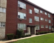 7209 Division Street Unit A3, River Forest image