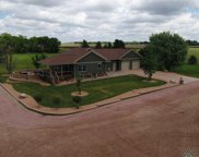 26155 445th Ave, Canistota image
