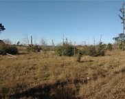 lot 6 Tall Forest, Bastrop image